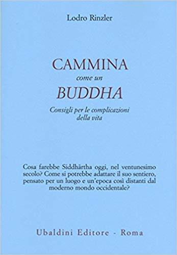 Lodro Rinzler, Cammina come un Buddha
