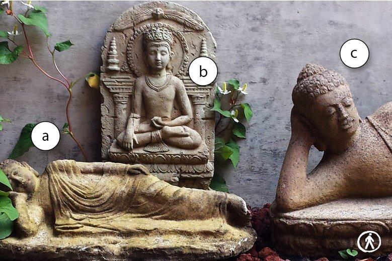 Daniel Goleman – Analogie e differenze tra le varie tecniche di meditazione
