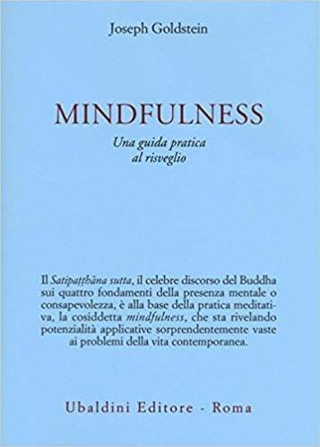 foseph goldstein mindfulness